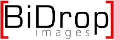 2Logo-Bidrop-Images-2015wordpress